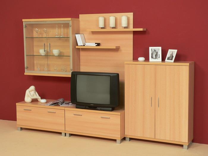 Wohnwand buche front wahlweise buche o rot hochglanz ebay for Buche wohnwand